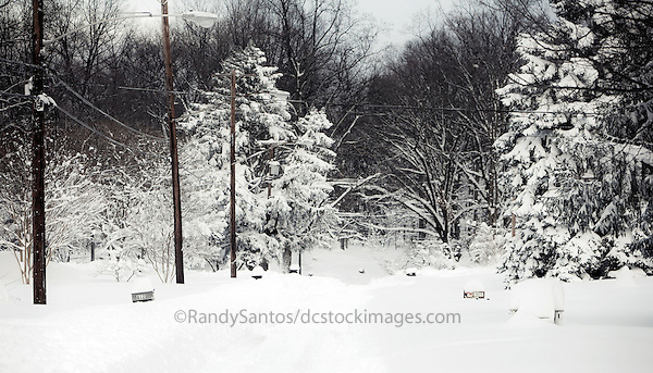 Snow / Blizzard 2010 Washington DC Silver Spring MD<br />