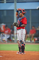 GCL Twins catcher Jhon Alvarez (20) during the second game of a doubleheader against the GCL Rays on July 18, 2017 at Charlotte Sports Park in Port Charlotte, Florida.  GCL Twins defeated the GCL Rays 4-2 after the game was postponed in the second inning to the following day at Charlotte Sports Park in Port Charlotte, Florida.  (Mike Janes/Four Seam Images)