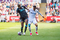 ( L-R ) Allan-Romeo of West Bromwich Albion and Matrin Olsson of Swansea City battle for the ball during the Premier League match between Swansea City and West Bromwich Albion at The Liberty Stadium, Swansea, Wales, UK. Sunday 21 May 2017 (Photo by Athena Pictures/Getty Images)