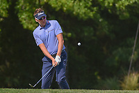 Ian Poulter (GBR) chips on to 2 during round 1 of the Houston Open, Golf Club of Houston, Houston, Texas. 3/29/2018.<br /> Picture: Golffile | Ken Murray<br /> <br /> <br /> All photo usage must carry mandatory copyright credit (© Golffile | Ken Murray)