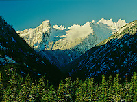 Snow-covered Pickett Mountain Range with foreground evergreen forest in North Cascades National Park, Washington State
