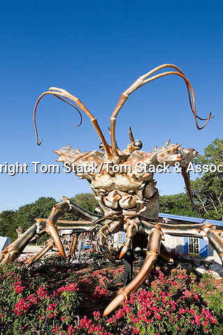 Giant Lobster statue in front of Rain Barrel Artists' Village, Islamorada, Florida Keys