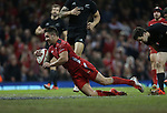 Wales scrum half Rhys Webb dives over to score a try.<br /> Dove men Series 2014<br /> Wales v New Zealand<br /> 22.11.14<br /> &copy;Steve Pope -SPORTINGWALES