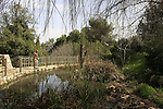 Israel, Mount Carmel. The Ecological garden at the Technion campus in Haifa