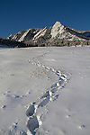 Snowshoe tracks at Chautauqua Park, Boulder, Colorado, .  John leads private photo tours in Boulder and throughout Colorado. Year-round Boulder photo tours.