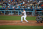Los Angeles Dodger starplayer Corey Seager admires his hit ball at a home game at dodger Stadium in Los Angeles, CA