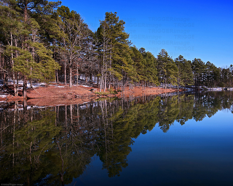 I wanted to get out and get a few snow photos since it rarely snows in Arkansas.  This is at a small city park with a pond - very peaceful.