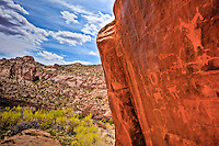 Petroglyphs above the canyon,  Utah BLM Wilderness Study Area, Ancient Puebloan rock art