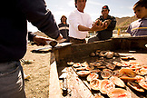 MEXICO, Baja, Magdalena Bay, Pacific Ocean, men cooking shellfish