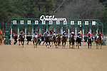 "The 3rd race at Oaklawn featured 11 horses as Calvin Borel is in the center riding ""Atticus The Man"" going for his 5000th win. Feb.18, 2013 - Hot Springs, Arkansas, U.S - (Credit Image: © Justin Manning/Eclipse/ZUMAPRESS.com)The 48th Running of the Southwest Stakes. Feb.18, 2013 - Hot Springs, Arkansas, U.S - (Credit Image: © Justin Manning/Eclipse/ZUMAPRESS.com)"