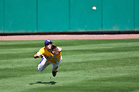 LSU Tigers center fielder Chris Sciambra #5 dives to make a catch during the NCAA baseball game against the Mississippi State Bulldogs on March 18, 2012 at Alex Box Stadium in Baton Rouge, Louisiana. LSU defeated Mississippi State 4-2. (Andrew Woolley / Four Seam Images).