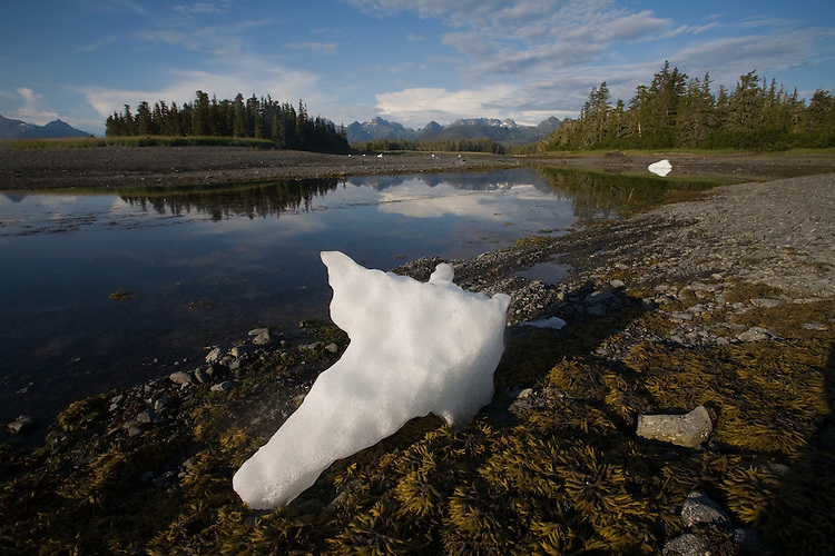 Alaska, Prince William Sound, Heather Island, beached icebergs, bergy bits,.