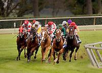 Shadwell Turf Mile Stakes Keeneland.Winner 9-8-3