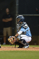 Maine Black Bears catcher Jonathan Salcedo (99) during a game against the Ball State Cardinals on March 3, 2015 at North Charlotte Regional Park in Port Charlotte, Florida.  Ball State defeated Maine 8-7.  (Mike Janes/Four Seam Images)