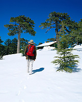 ZYPERN, Sued-Zypern, Bezirk Paphos: Troodos-Gebirge im Landesinnern: Urlauberin im Schnee unterwegs zum Gipfel | CYPRUS, South-Cyprus, Paphos region: Hiker in Snow at Troodos-Mountains