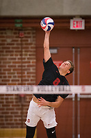 STANFORD, CA - January 2, 2018: Leo Henken at Burnham Pavilion. The Stanford Cardinal defeated the Calgary Dinos 3-1.