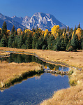 Grand Teton National Park, WY<br /> Mount Moran and the Teton Range rise above a stream and beaver pond near Schwabacher Landing on the Snake River
