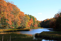 A beautiful pond surrounded with bright foliage of autumn  colors in Yorktown Virnia.