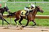 My T Swift winning at Delaware Park on 8/29/2013