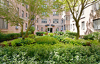 Courtyard at 35 Parkview Avenue