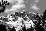 """""""Winter Wonderland"""" Mt. Tallac, Lake Tahoe, CA. Size Does Matter!! You can see ski tracks in every patch of snow visible on the entire mountain. Extreme skiers descend the face of Mt Tallac via """"the Cross"""", including the smaller shoots and Cathedral bowl on the left. An avalanche fracture line can be seen below the cross in the lower section of the mountain.  There are tracks in the north bowl and in all the trees to the right. Mt. Tallac is a Winter Wonderland to the local mountaineers. I have climbed and skied Tallac many times over the last 29 years. It is truly a spiritual experience to expend the energy to climb the 3000 ft vertical gain and then have the time of your life getting back to your car. No chairlifts just the mountain at it's finest. I started in B/W film in a darkroom and still love it today!! The clarity and detail of the ski tracks and mountain with the vastly different shades of grey make this a Classic """"One of a Kind"""" Lake Tahoe Photograph!!"""
