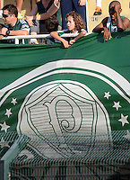 SAO PAULO SP, 10 agosto 2013 - Palmeiras X Parana -  Torcedor do Palmeiras durante partida contra o Parana valida pelo campeonato brasileiro de 2013  no Estadio do Pacaembu em  Sao Paulo, neste sabado, 10. (FOTO: ALAN MORICI / BRAZIL PHOTO PRESS).