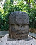 Monument 3, the Young Warrior, from the Olmec ruins of La Venta. Preclassic Period (700-400 B.C.).  La Venta Museum, Villahermosa, Mexico.