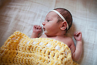 16-04-24-05-13 Baby Violet