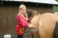 Wanderritt mit Pony in Nord-Norwegen, Skandinavien, Mädchen putzt und striegelt ihr Pony, Wander-Ausritt, Ausritt, Reiten
