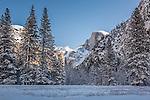 Half Dome in Yosemite Valley, Yosemite National Park, CA