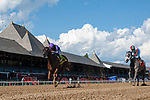August 22, 2020: Central Exit #4, ridden by Junior Alvarado, wins the 6th race on  The FourStarDave day at Saratoga Race Course in Saratoga Springs, New York. Rob Simmons/CSM