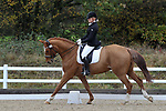 Class 7. Medium 61. British Dressage. Brook Farm training centre. Essex. UK. 11/11/2017. ~ MANDATORY CREDIT Garry Bowden/Sport in Pictures - NO UNAUTHORISED USE - +44 7837 394578