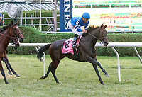 First time by for Lady Montdore (no. 8) as she wins the Saranac Stakes (Grade 2), Sep. 1, 2018 at the Saratoga Race Course, Saratoga Springs, NY.  Ridden by Manuel Franco, and trained by Thomas Albertrani, Lady Montdore finished 2 1/4 lengths in front of Santa Monica (No. 5).  (Bruce Dudek/Eclipse Sportswire)