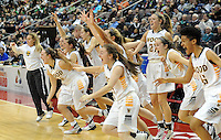 Archbishop Wood storms the court as they celebrate after defeating Villa Maria to win the girls basketball PIAA Class AAA state championship Saturday March 19, 2016 at the Giant Center in Hershey, Pennsylvania (Photo By William Thomas Cain)