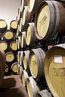 barrel cellar Bodega Agribergidum, DO Bierzo, Pieros-Cacabelos spain castile and leon