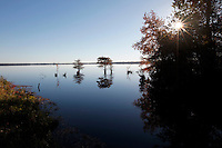Lake Drummond, The Great Dismal Swamp National Wildlife Refuge, Suffolk, Virginia on November 14, 2010.