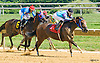 Elita winning at Delaware Park on 8/27/16