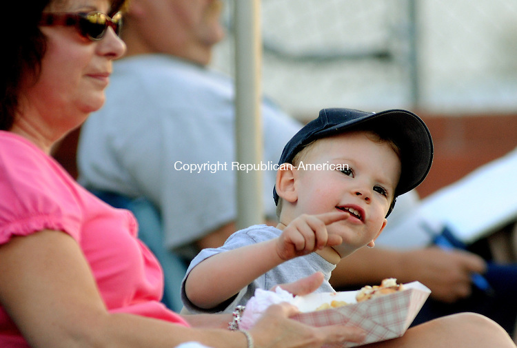 TORRINGTON, CT 09  JULY, 2010-07090JS01-Jack Bates, 2, of Torrington, watches a foul ball go out of the park while attending his first baseball game with his grandmother Sandy O'Connor of Winsted as they watch the Torrington Titans take on Southampton Friday at Fuessenich Park in Torrington.  <br /> Jim Shannon Republican-American