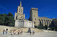 Tourists outside the Palace of the Popes and the Notre Dame des Doms, Avignon, Provence, France.