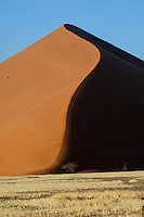 The distinctive shape of Dune 45 at Sossusvlei, Namibia. The dunes extend nearly 70km to the coast and present a deeply hostile environment. In the hot season, day-time temperatures can reach as high as 70 degrees centigrade.