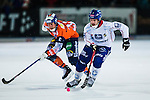Bolln&auml;s 2013-10-25 Bandy Elitserien Bolln&auml;s GIF - Edsbyns IF :  <br /> Edsbyn Mattias Hammarstr&ouml;m i aktion <br /> (Foto: Kenta J&ouml;nsson) Nyckelord:
