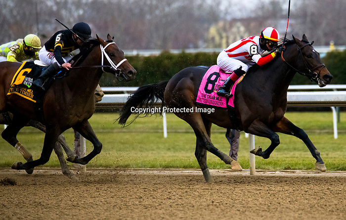 DECEMBER 01, 2018 : #8 Patternrecognition, ridden by Jose Ortiz, wins the Grade one Cigar Mile  at Aqueduct Racetrack on December 01, 2018 in Ozone Park, NY. Dan Hearyi/ESW/CSM