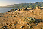 Eroded hilltop above Christy Beach, Santa Cruz Island, Channel Islands, California