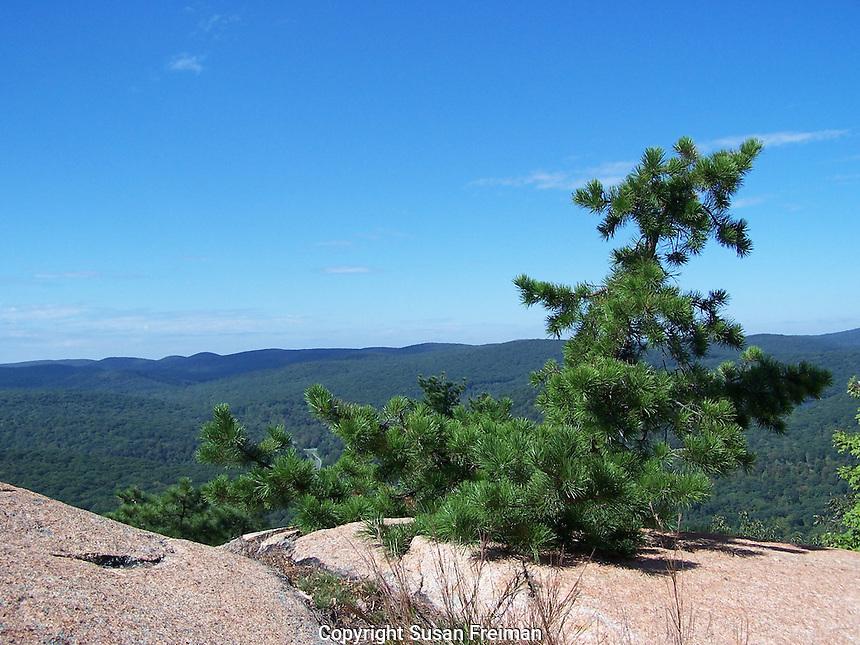 Bear Mountain State Park, September, 2011