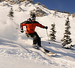 Powder skiing, Alta Utah under a blue sky.