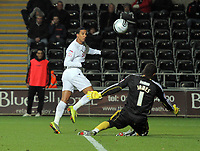 ATTENTION SPORTS PICTURE DESK<br /> Pictured<br /> Re: npower Championship, Swansea City FC v Bristol City Football Club at the Liberty Stadium, south Wales. Wednesday 10 November 2010