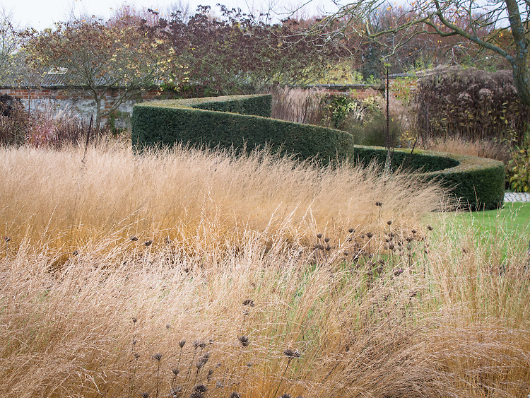Piet Oudolf garden at Bury Court, Bentley, Surrey, mid November.
