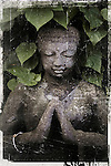 Stone Buddha under leaves