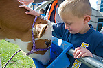 Ryder Rubke, 6, of Fremont Elementary School in Carson City, Nev., participates in the cow plop fundraiser, where he was able to meet Buttercup, a Holstein Ayrshire mix Friday, April 15, 2016.<br />