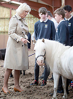 25 June 2019 - Scotland, UK - Camilla Duchess of Cornwall, who is known as the Duchess of Rothesay when in Scotland, meets Nugget the pony during a visit to HorseBack UK, in South Ferrar, Aboyne. The charity which supports veterans and children is celebrating its 10th birthday. Photo Credit: ALPR/AdMedia
